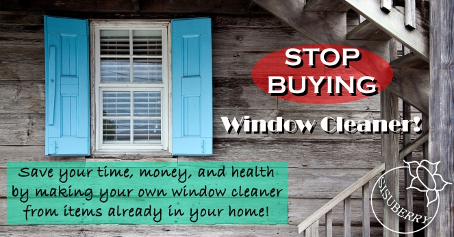 Stop Buying Window Cleaner Feature 2000x1046