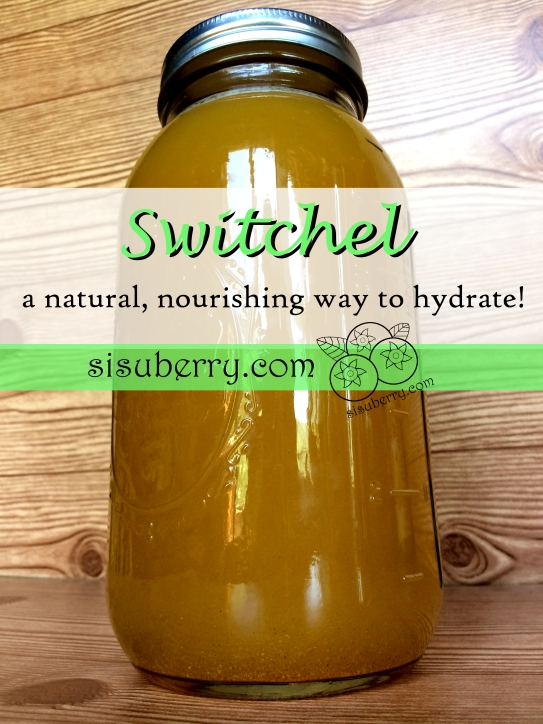 Switchel: Natural and Nourishing Hydration | Sisuberry.com